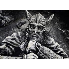 "Koszulka ""Viking Warrior"" HD"